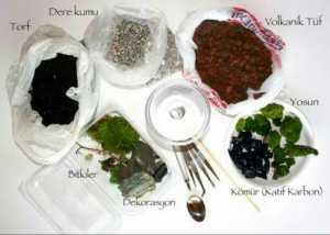 Teraryum için gerekli mazemeler , teraryum için gerekli bitkiler, teraryum nasıl yapılır