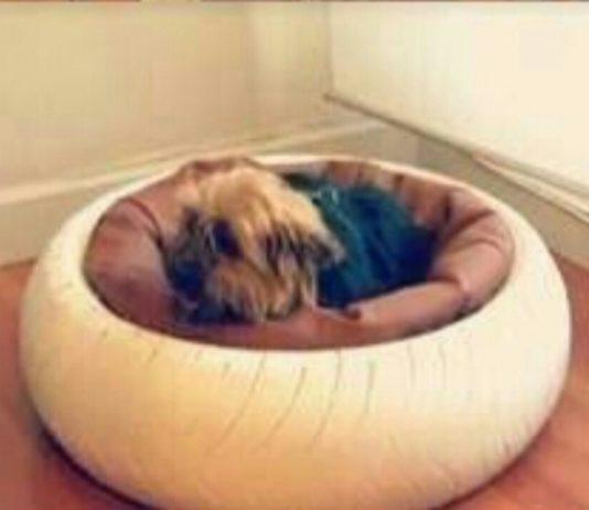 Araba lastiği ile hayvan yatağı yapılışı