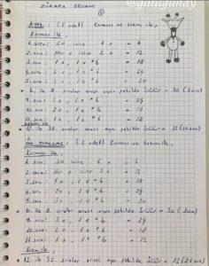 Amigurumi oyuncak modelleri ve ayrıntılı tarifleri