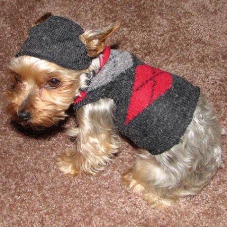 çoraptan köpek giysisi yapılışı